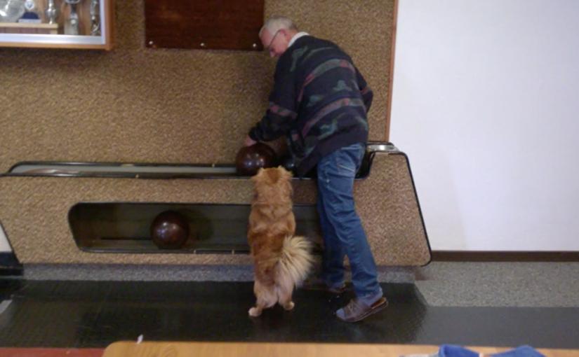Auch Hunde haben Spass beim Kegeln